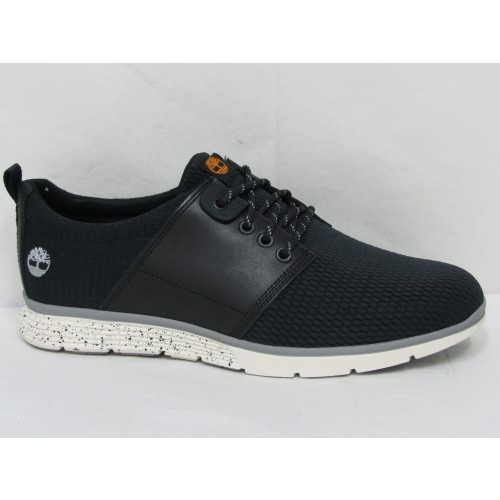 Casual Timberland Q62